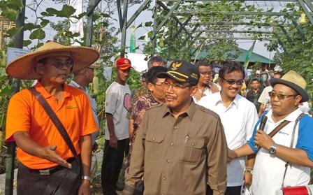 Suswono: Indonesia Butuh Tambahan 27.269 Penyuluh Pertanian