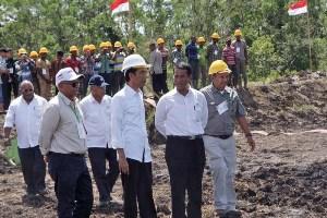 Merauke Dicanangkan Jokowi sebagai Lumbung Padi Nasional