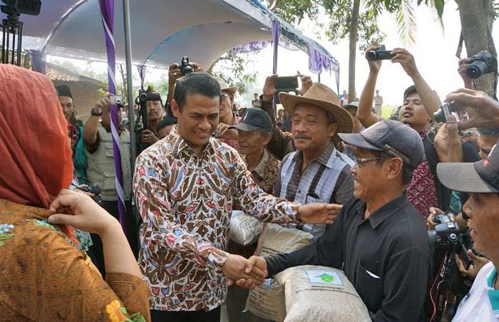 Mentan Panen Padi Varietas IPB 3S di Karawang dalam Berita Foto
