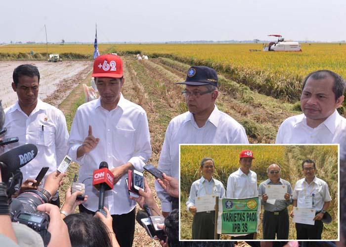 Berita Foto Presiden Jokowi Panen Padi Modern di Karawang