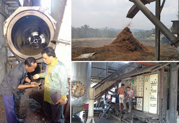 Koperasi Ternyata Mampu Kembangkan Pabrik Kelapa Sawit