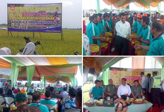 Mentan Panen Raya di Jawa Tengah dalam Berita Foto