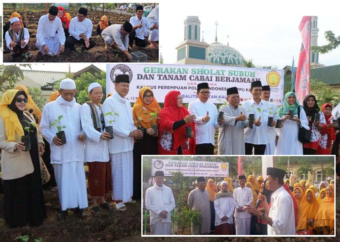 Synergy of Central and Local Governments Developing Urban Farming in Indonesia