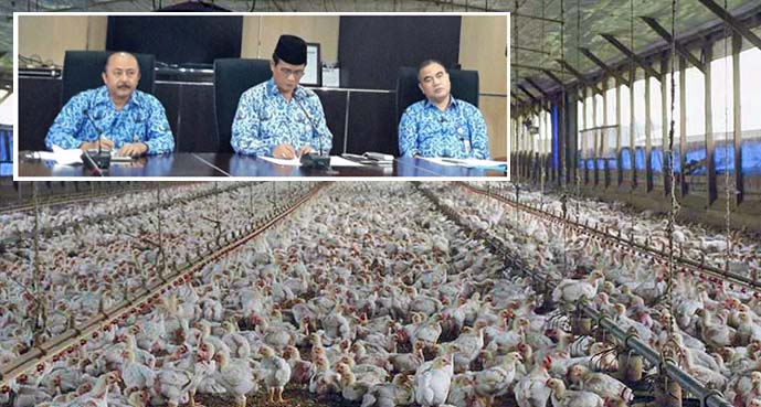 Indonesia Seeks New Export Markets, Anticipate Oversupply Processed Chicken Meat?