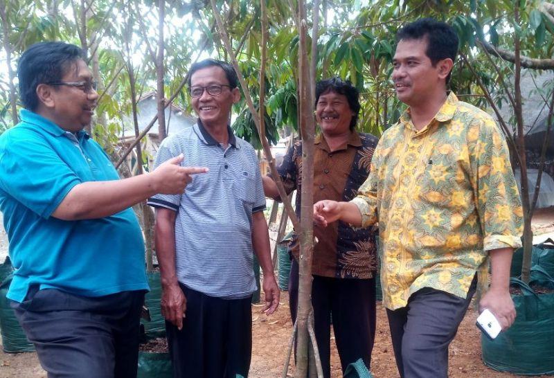 LTT Banyumas Dipantau, PJ Upsus Jateng Dukung Promosi Durian Bawor