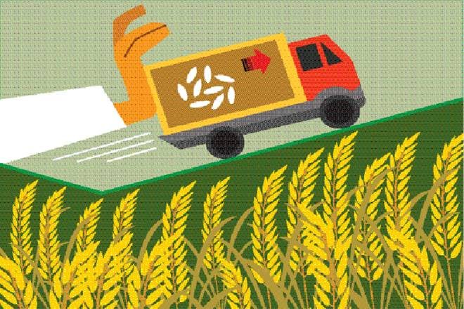 Tinggalkan Polemik Data Kementerian Pertanian Ri Uraikan Capaian