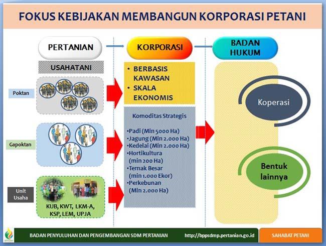 Petani jadi Pengusaha, Ini Model Pengembangan Korporasi di Pedesaan