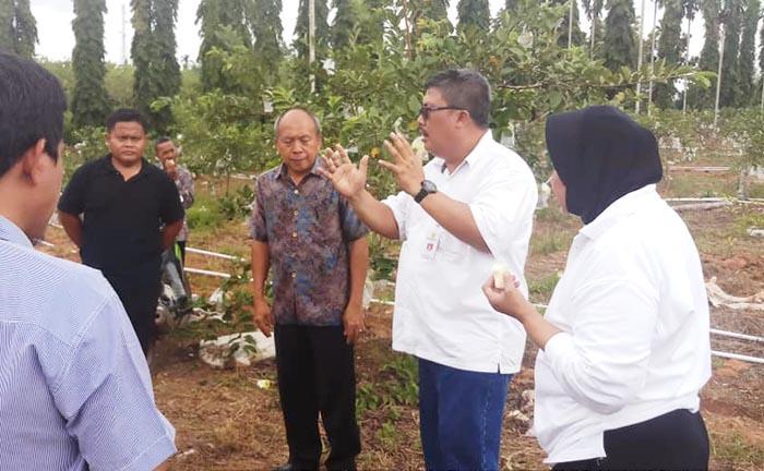 Kunker Sumsel, Berita Foto Sesba BPPSDMP di SMK PP Negeri Sembawa