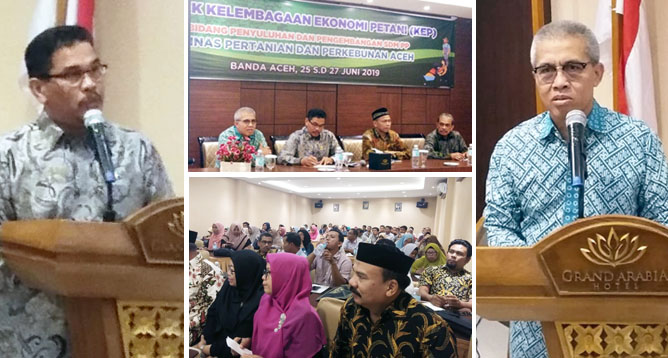 Farmer Groups Determine Success of Indonesian Agricultural Development