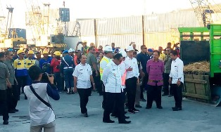 Indonesia`s Cattle Ships Support Beef Procurement in the Consumer area?