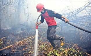 Ribuan Orang Berjibaku Atasi Kebakaran Hutan dan Lahan