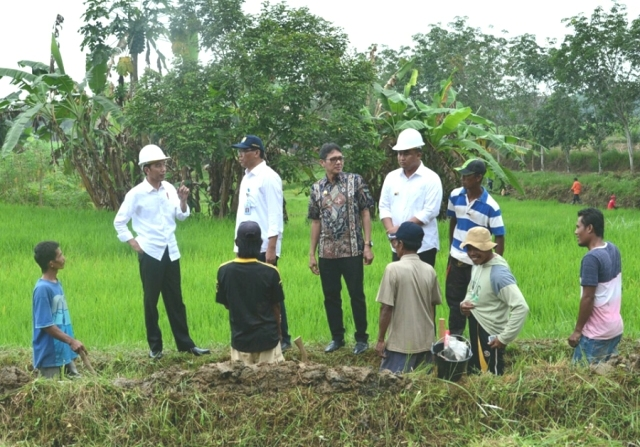 Indonesia`s Dharmasraya Developing Agriculture for Region Economic Growth?