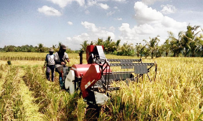 Indonesian Agriculture Ministry Anticipate Covid-19 by Weaker Health Systems