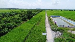 Naik 3 Kali Lipat, Target Program Pembangunan Jalan Usaha Tani untuk 2020