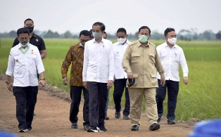 Indonesia´s Widodo Visit to Central Borneo for the Food Estate?