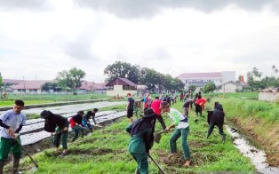Urban Farming Supports the Decline of Poor Households in Indonesia?