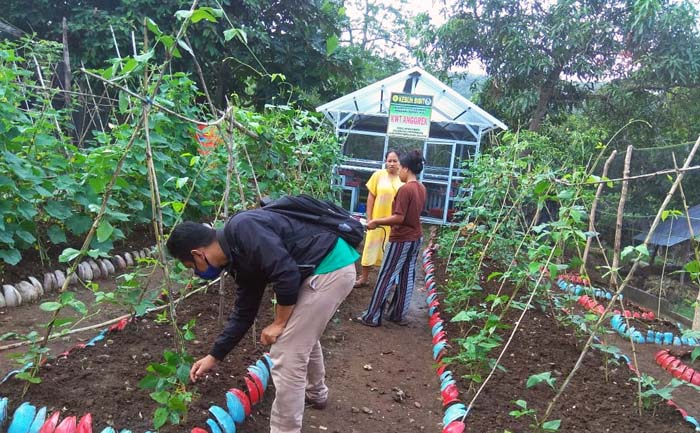 Urban Farming Supports the Decline of Poor Households in Indonesia