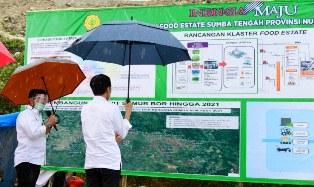 Skala Ekonomi, Pengembangan `Food Estate` Sumba Terbagi Lima Zona
