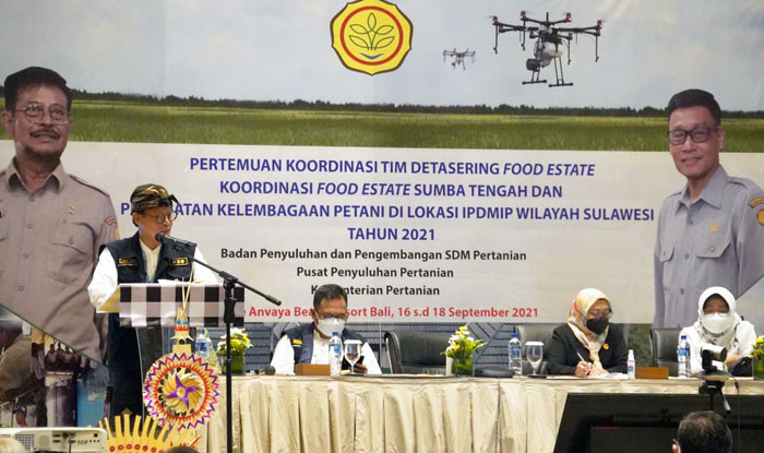 Indonesian Govt Developing the Food Estate in Three Provinces